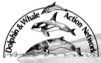 Whale and Dolphin Action Network