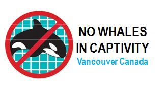 No Whales in Captivity