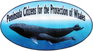Peninsula Citizens for the Protection of Whales